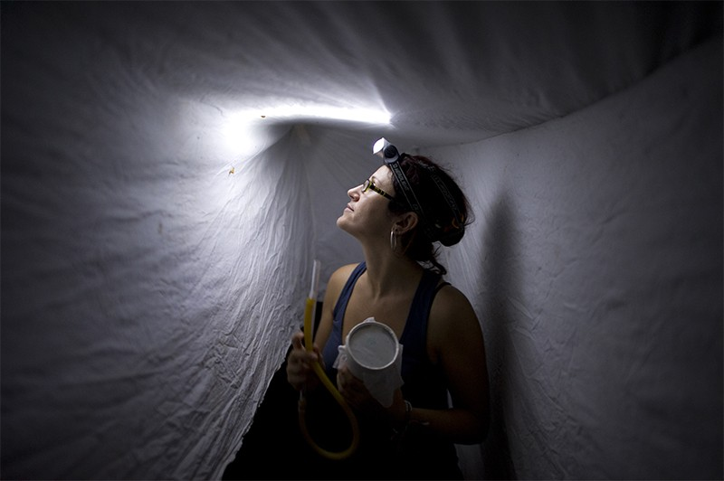 Photo of researcher capturing mosquitos as part of malaria research in Peru.