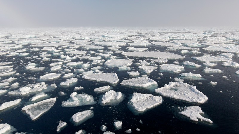 Drift ice/ice floes in the Arctic Ocean.