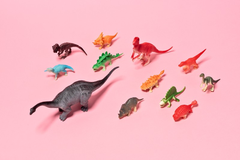 A collection of toy dinosaurs on a pink background