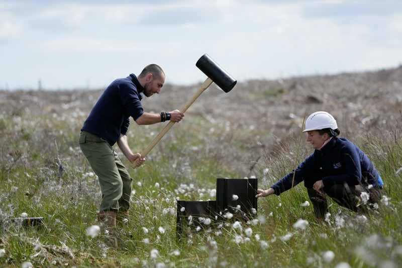 A man and women use a large mallet to install a small dam across a drain in Scottish peatland
