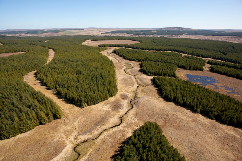 A blanket bog with areas of trees plantations and a waterway running through the middle