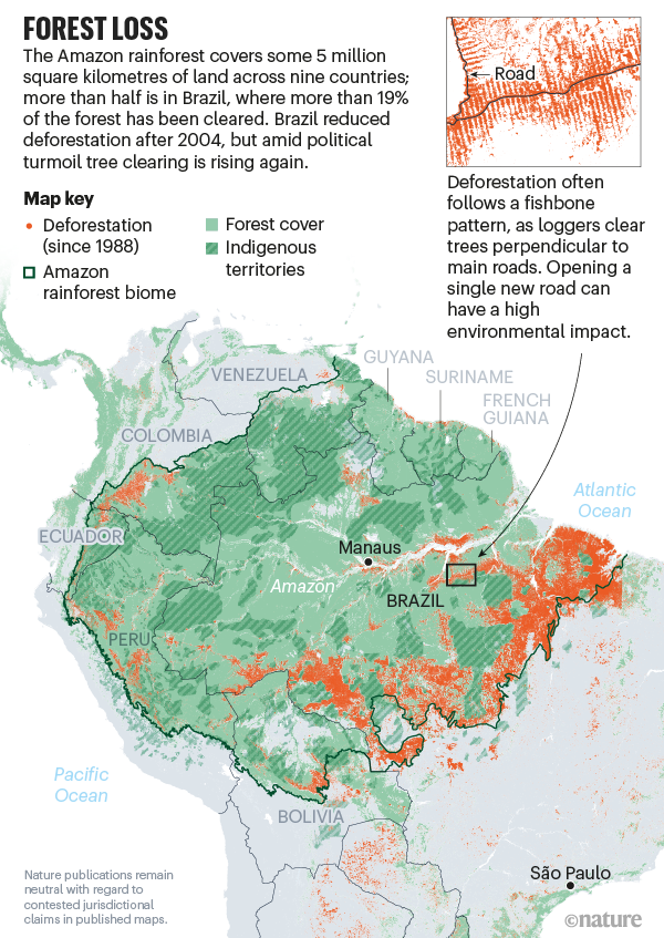 Forest loss. Map showing deforestation in Amazonia.