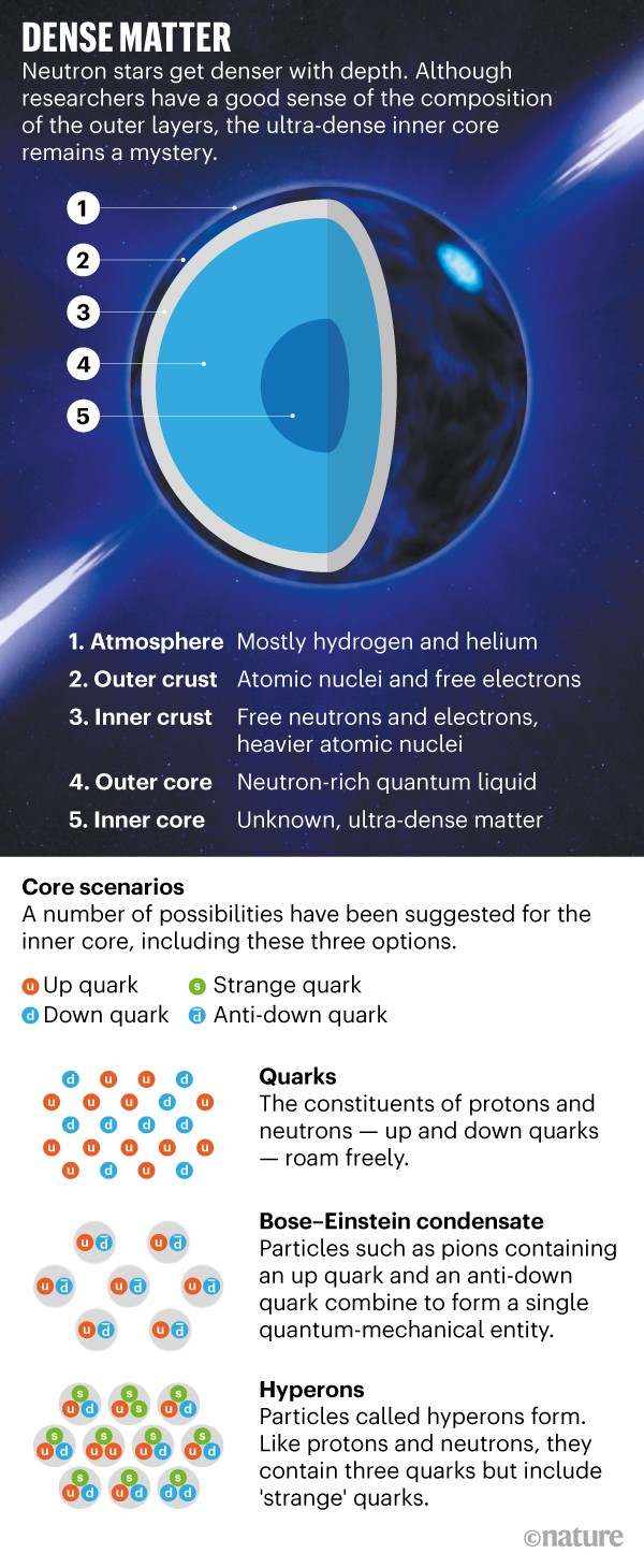 Describes the interior of a Neutron Star and possible scenarios for composition of its dense inner core.
