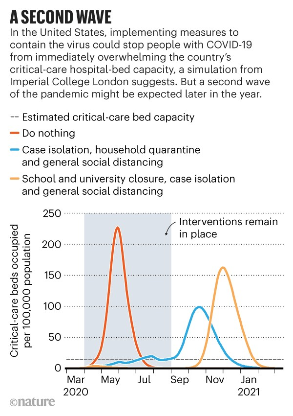 A second wave: Modelled number of critical-care beds occupied in the United States as a result of virus-containment measures.