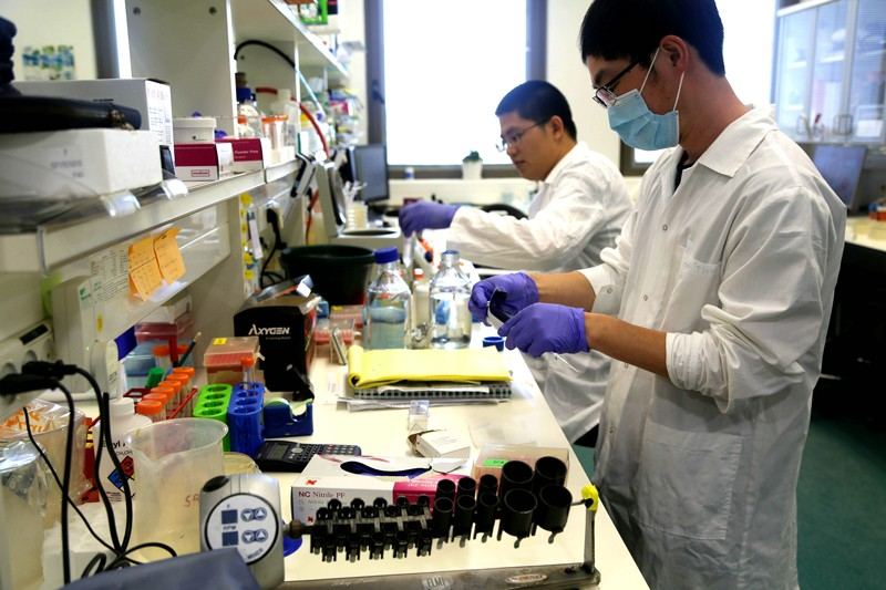 Two postdoctoral researchers working in a labortaory
