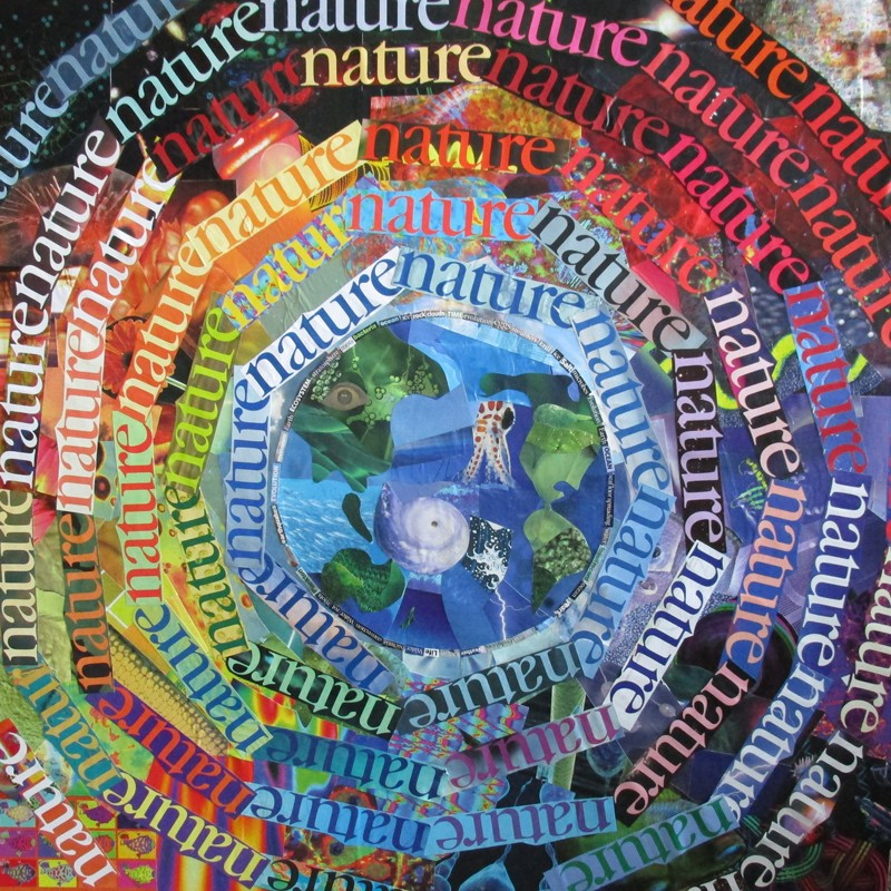 A colourful collage of the Nature logos arranged in concentric circles around photos of a baby squid, human and hurricane.