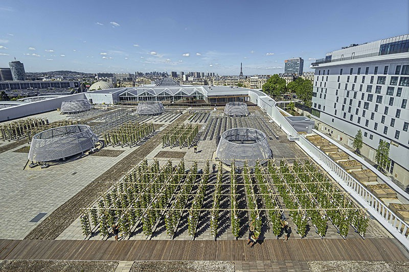 The largest urban plant farm in the world on a rooftop in Paris, France