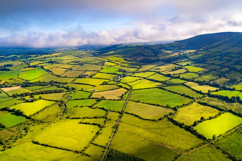 Aerial view of green fields.