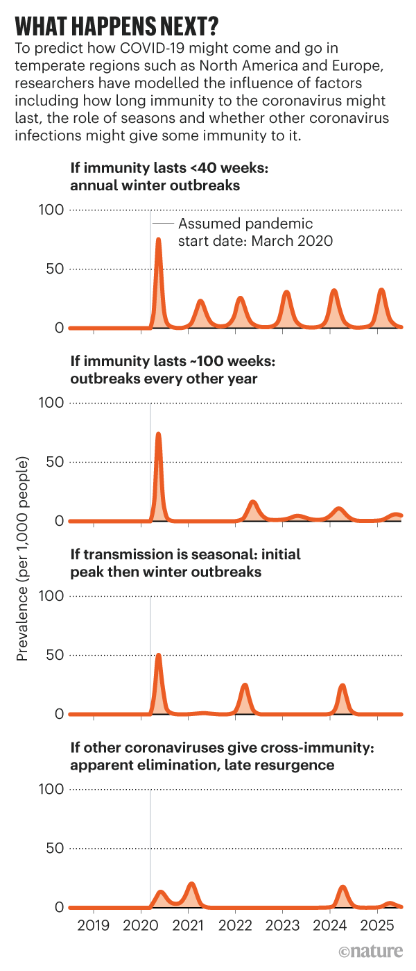 Graphic showing how immunity and the role of seasons could effect temperate regions in the future.