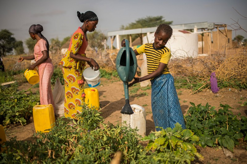 Two women and a girl in water their garden in Senegal
