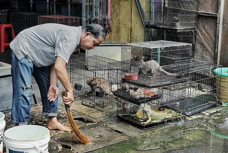 Animais vivos, incluindo vida selvagem local, estão à venda em Bali, na Indonésia