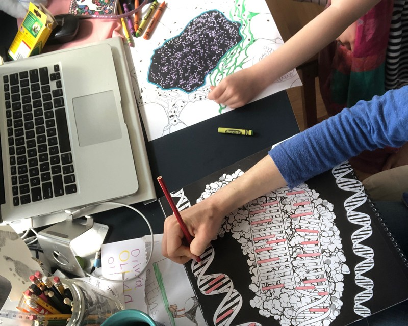 An adult's arm and a child's arm, colouring in pictures side by side on a desk.