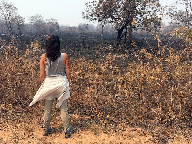 Back view of a woman looking at dry vegetation and scorched ground and trees.