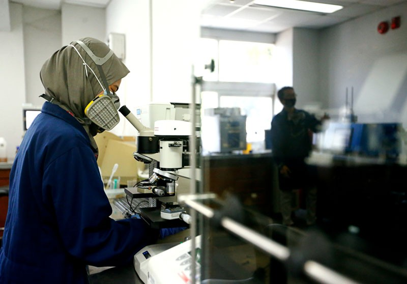 A researcher wearing a face mask and a head covering looks into a microscope in a laboratory