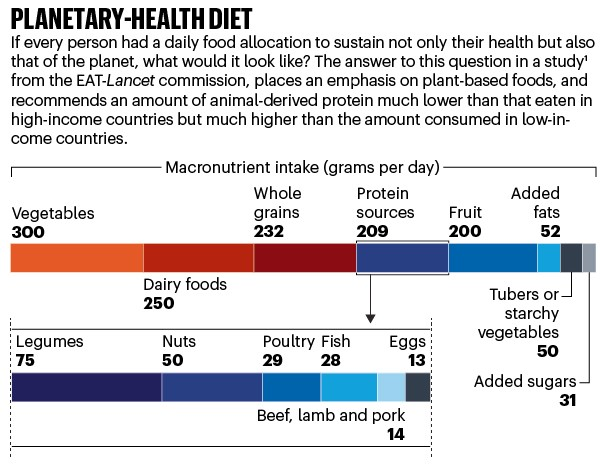 Planetary-health diet: bar chart showing macronutrient intake for foddstuffs per day