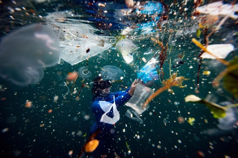 A free-diver dives amid plastic waste