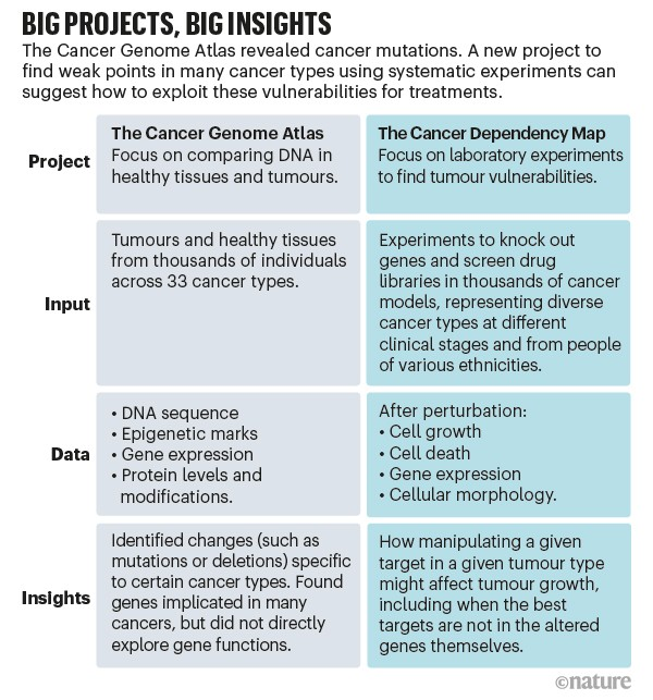 Big projects, big insights. A comparison between The Cancer Genome Atlas and The Cancer Dependency Map.