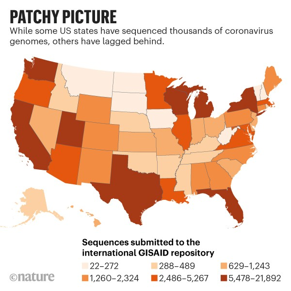 Patchy picture: Map of the US showing number of sequences submitted to the international GISAID repository by state.