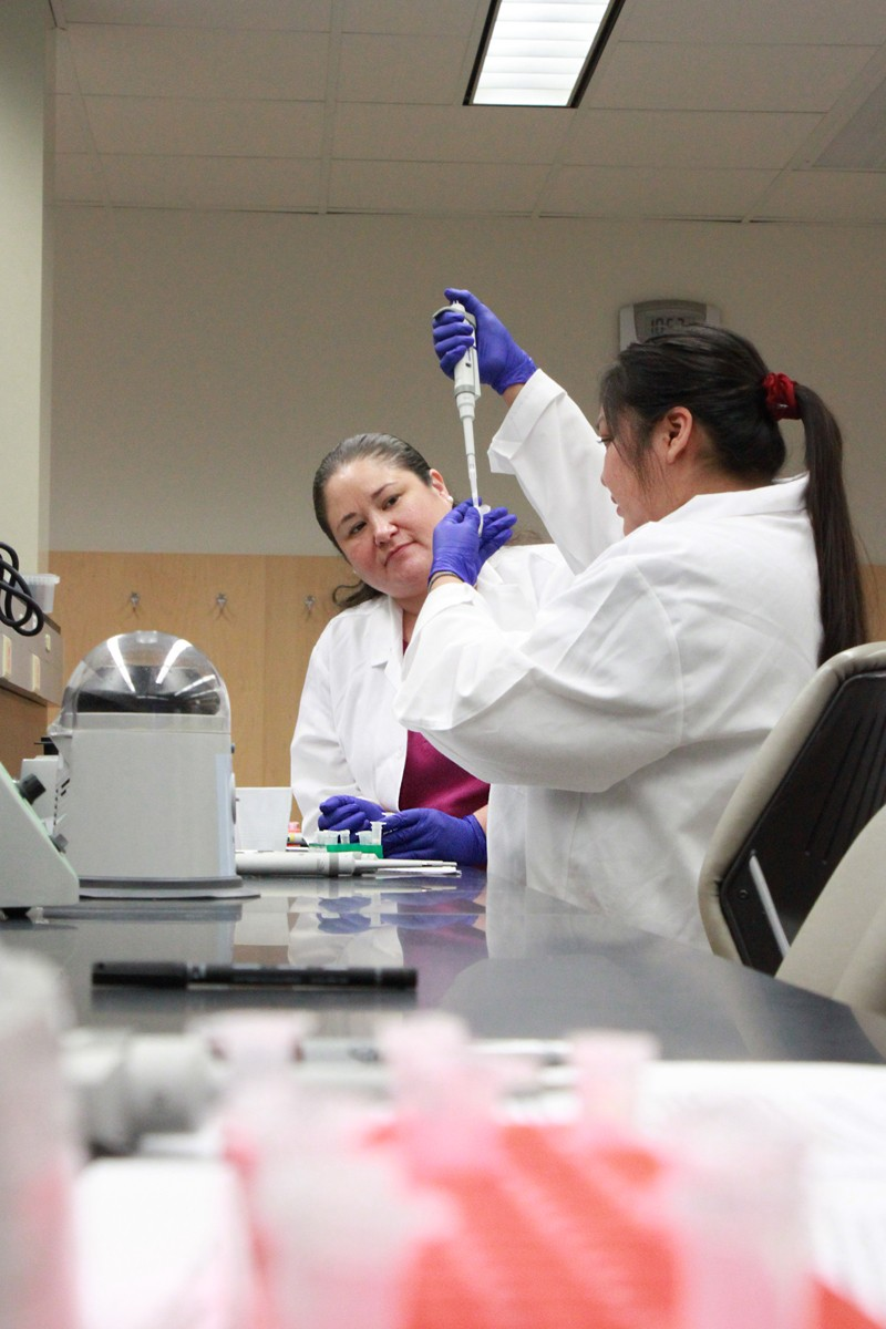 Participants in the Summer Internship for Indigenous Peoples in Genomics work together in a lab