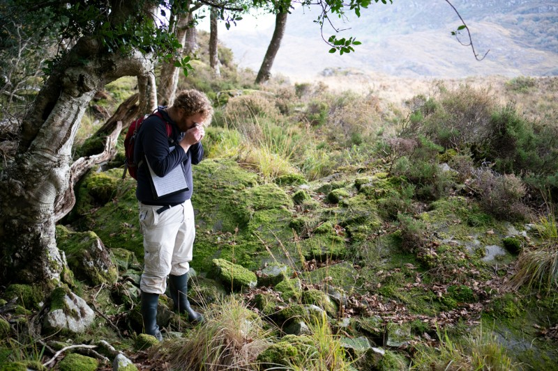 Rory Hodd stands amongst trees, ferns and rocks looking through a small magnifying glass at a sample of moss