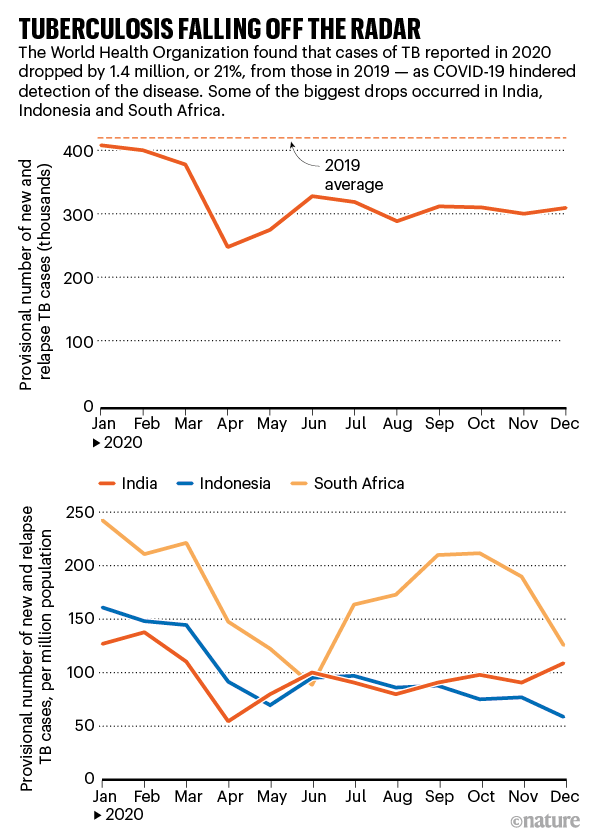 Tuberculosis falling off the radar. Charts showing reported TB cases drop during 2020.