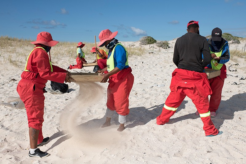The image shows a clean-up worker collecting nurdles on the Arniston beach in the Western Cape province of South Africa.