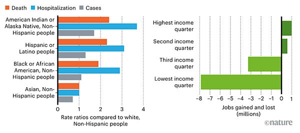 Charts comparing the rates of COVID-19-related deaths, hospitalizations and cases by race and job losses by income level.