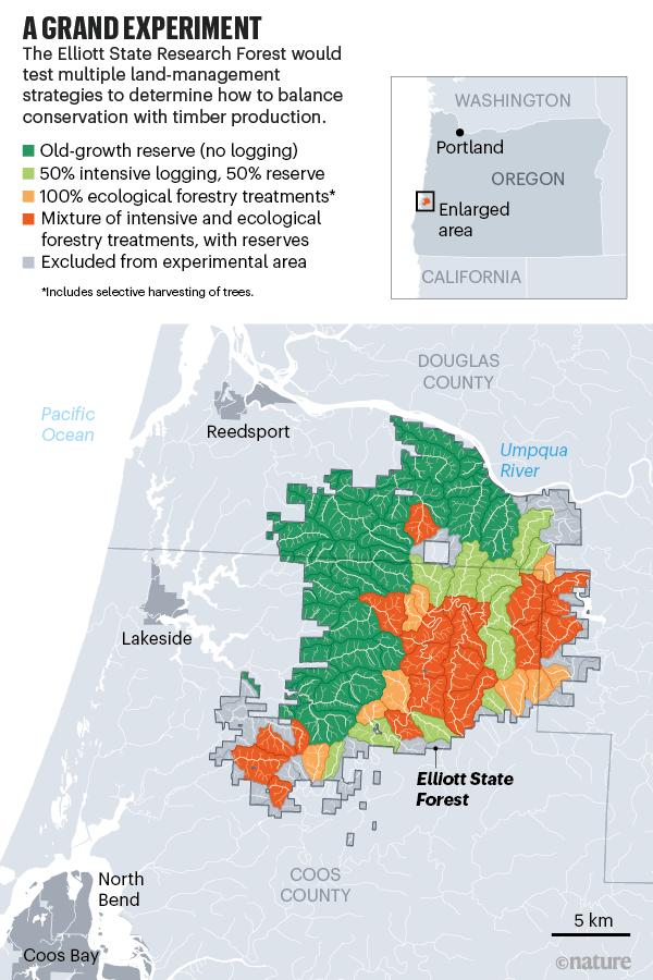 Büyük bir deney.  Elliott Eyalet Ormanı'nın deneysel alanın kapsamını gösteren bir haritası.