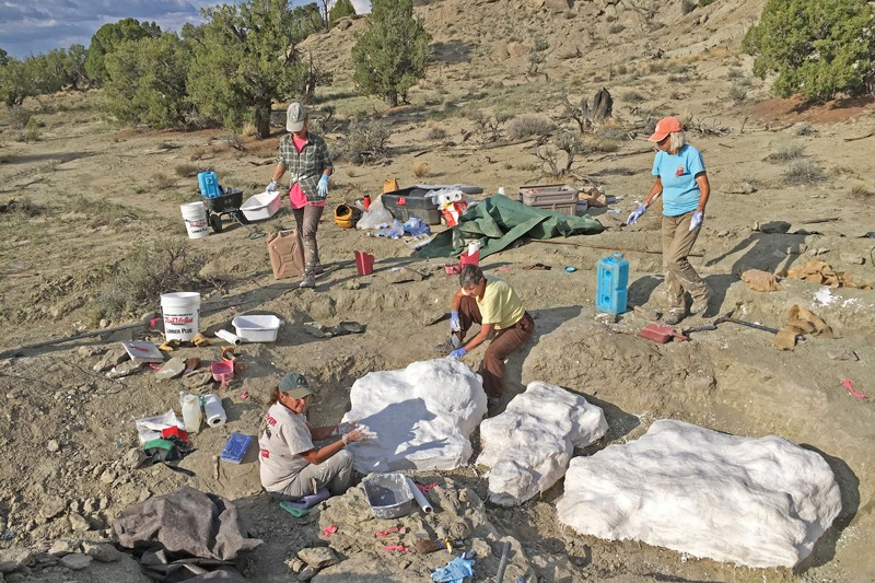 Researchers prepare fossils to be airlifted on Grand Staircase-Escalante National Monument
