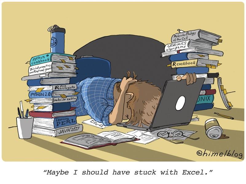 """Çizgi film: Kişi kodlama kitapları ve bir dizüstü bilgisayarla dolu masaya vuruyor.  Altyazı: """"Belki de Excel'de kalmalıydım."""""""