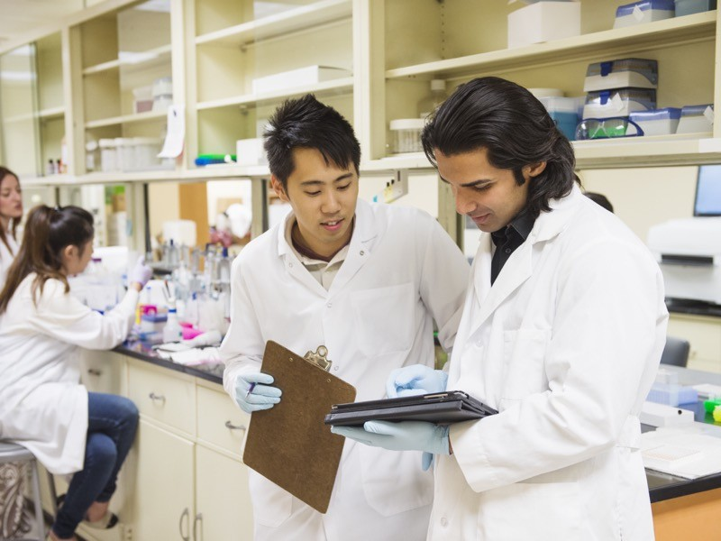 Scientists working in laboratory.