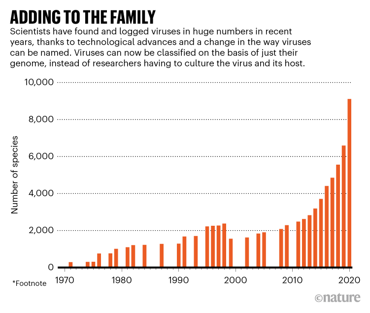 ADDING TO THE FAMILY. Graphic showing how scientists have found and logged viruses in huge numbers in recent years..