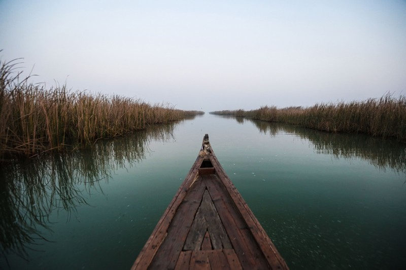 The front of a fishing boat glides between the reeds in the Mesopotamian marshes