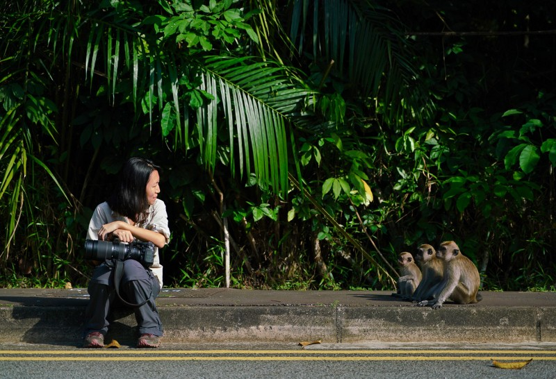 Andie Ang and her long-tailed macaques.