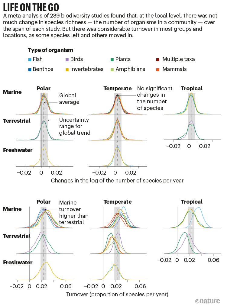 Life on the go: a series of graphs, showing that species richness is unchanged, whilst species turnover is high.