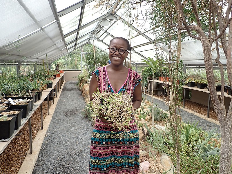 Nox Makunga in a greenhouse holding a pot of Sceletium tortuosum, one of the plants she researches.