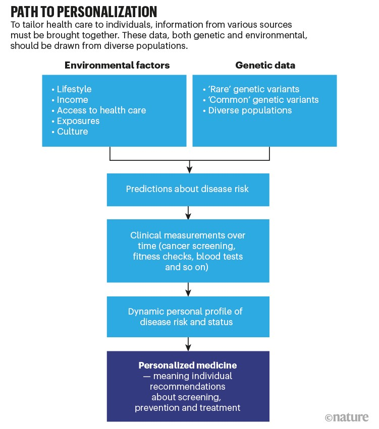 Path to personalization. Flow chart showing the steps to tailored medicine.
