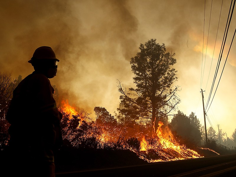 A firefighter looks on as flames devour a tree in Paradise, California