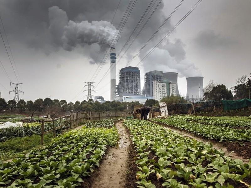 Ένας άντρας τείνει στα λαχανικά σε ένα χωράφι καθώς οι εκπομπές αυξάνονται από τους κοντινούς πύργους ψύξης ενός σταθμού παραγωγής ενέργειας από άνθρακα, στην Κίνα.