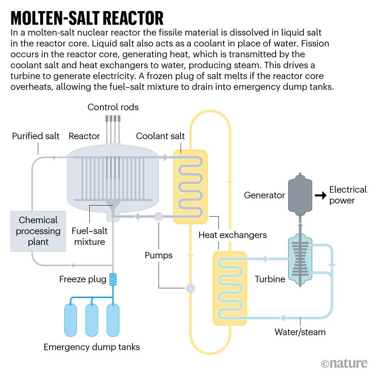 MOLTEN-SALT REACTOR. Graphic showing how a molten-salt nuclear reactor works.