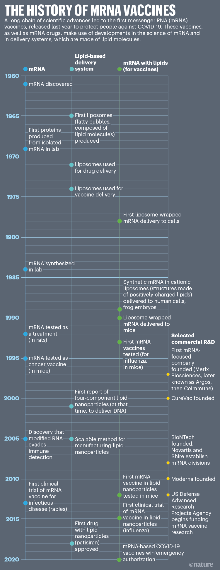 The history of mRNA vaccines: A timeline that shows the key scientific innovations in the development of mRNA vaccines.