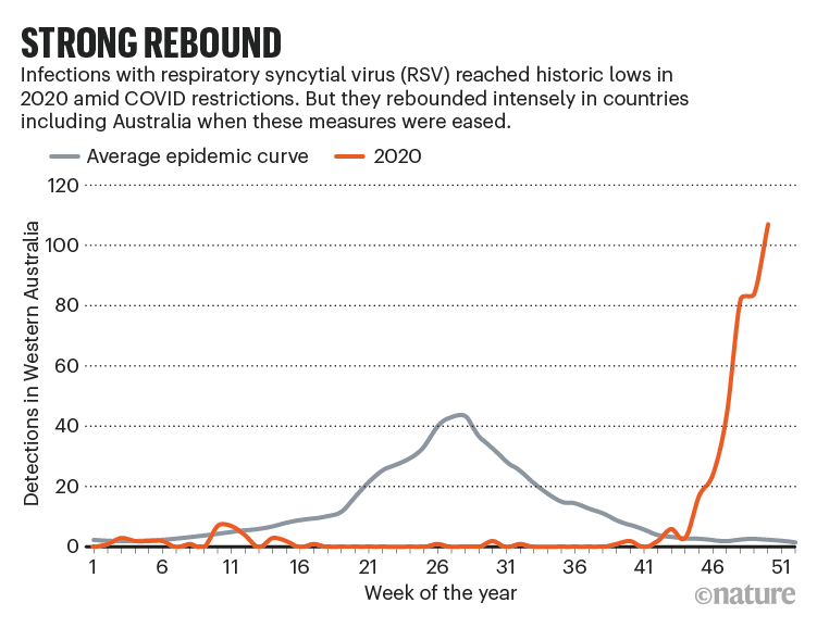 STRONG REBOUND: chart comparing the average yearly cases of respiratory syncytial virus in Western Australia with 2020