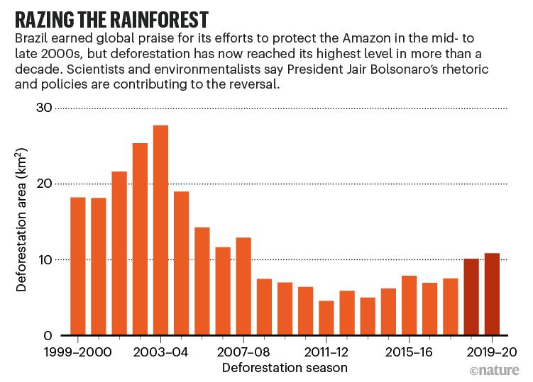 Razing the rainforest. Chart showing raising trend in deforestation.