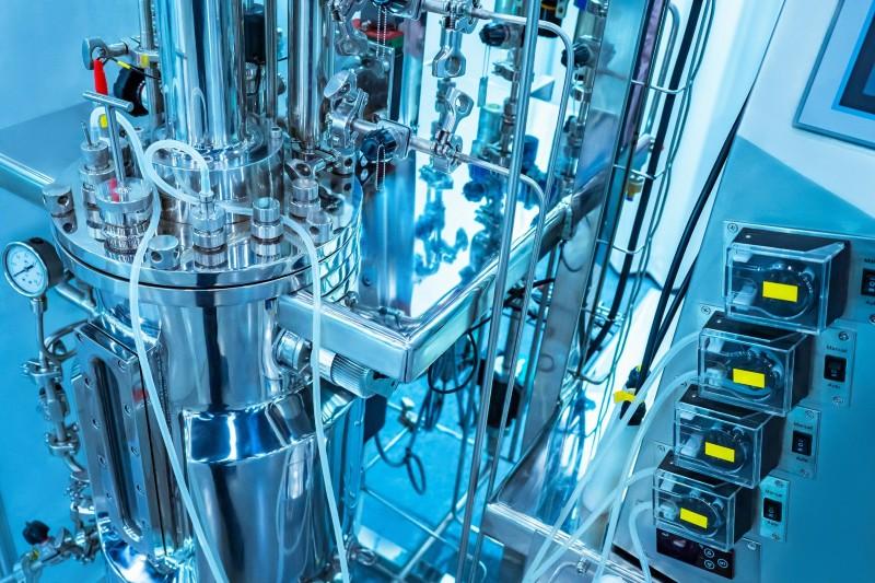 Breakthrough in bio-based production of longevity vitamin, ergothioneine