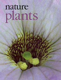 Nature Plants cover