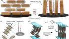 Thickness-independent capacitance of vertically aligned liquid-crystalline MXenes