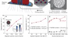 Printing ferromagnetic domains for untethered fast-transforming soft materials