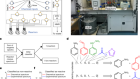 Controlling an organic synthesis robot with machine learning to search for new reactivity