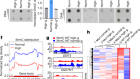 Glucose-regulated phosphorylation of TET2 by AMPK reveals a pathway linking diabetes to cancer