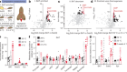 Accumulation of succinate controls activation of adipose tissue thermogenesis
